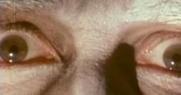 Die Augen des Monsters mit der Teufelsklaue.