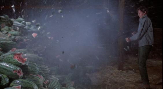 """""""DAS GESETZ BIN ICH ist einer meiner absoluten Lieblingsfilme: Wenn die Schurken die Ernte Majestyks kaputtballern, die wunderbaren Melonen zerplatzen, das Fruchtfleisch herumspritzt und die Arbeit eines Jahres zerstört wird, dann ist das ein unglaublich schmerzhafter Moment, einer der völlig unvermittelt ins Herz trifft. Es ist ein so unerträglich klares Bild, eines, dessen archaischer Wucht man sich einfach nicht entziehen kann."""""""